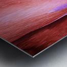 Salmon Gum Tree Bark 8 Metal print