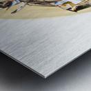 FAA_Kreol Nippon 01 Metal print