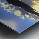 JPT 554 Metal print