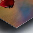 Red bud Metal print