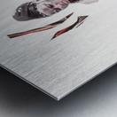 amazing grace5 Metal print