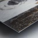 fille_jerusem_1 Metal print