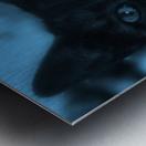black cat in blue Metal print