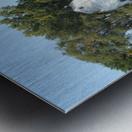 Peaceful Pond Metal print