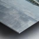 Dolphin Cove Metal print