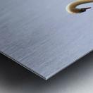 Swans and Sygnets on lake Metal print