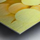 yellow circles Metal print