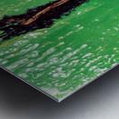 Garden Rift Metal print
