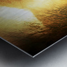Autumnal Landscape 2 Metal print