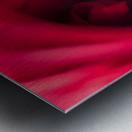 Red 2 Metal print