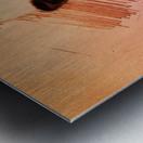 Sinéad OConnor Metal print