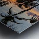 Eleuthera Sunrise on the Hammock Metal print