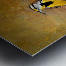 Eastern Meadowlark Metal print