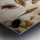 Biodiversity Metal print