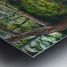 Minnesota Arboretum Metal print