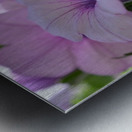 Floral Photography  Metal print