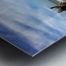 Driftwood Beach Panorama 101 Metal print