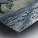 Mouflon in the Forest Portrait Metal print