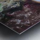 IMG_3975 Metal print
