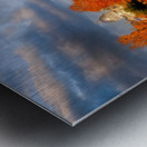 _TEL6435 1 copy 2 Metal print