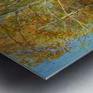 Birch_Trees_In_Tsaritsyno Metal print