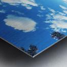 Tidal Basin Cherry Blossoms Metal print