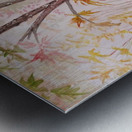 Autumn_DKS Metal print