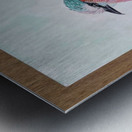 Robin_DKS Metal print