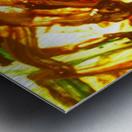 Exaltation Acoustic Version Metal print