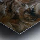 Leos. Tenderness. Metal print