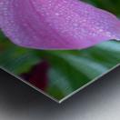 Floral Photograph  Metal print