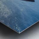 Great White Dive Metal print