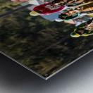 Aiken Steeplechase 4998 Metal print