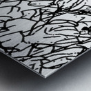 Black & White Art Transparent Metal print
