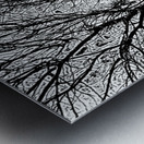 Afridaizy Black & White Trees Threshold029 Metal print