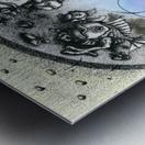 Fish_places Metal print
