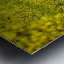 Full Stack of Yellows Metal print