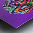 ColorThroughCulture VI Metal print