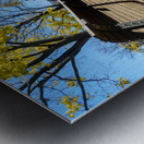 Autumn leaves in the park Metal print
