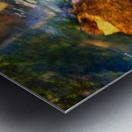 River I Metal print