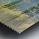 Lakeside Intrigue Metal print