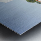 MiMo 031 Metal print