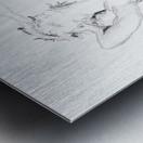 DAPHNE - Carbon Metal print