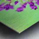 Neon Allium Metal print