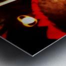 Spacetime Phone Box RLM Metal print