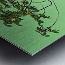 Nature - XIII Metal print