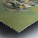 Sunny Sparrow Metal print