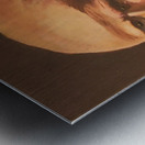 Abraham Metal print