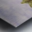 Village Green Metal print
