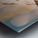 Ladakh Stream Metal print